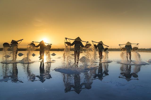vietnamská sůl