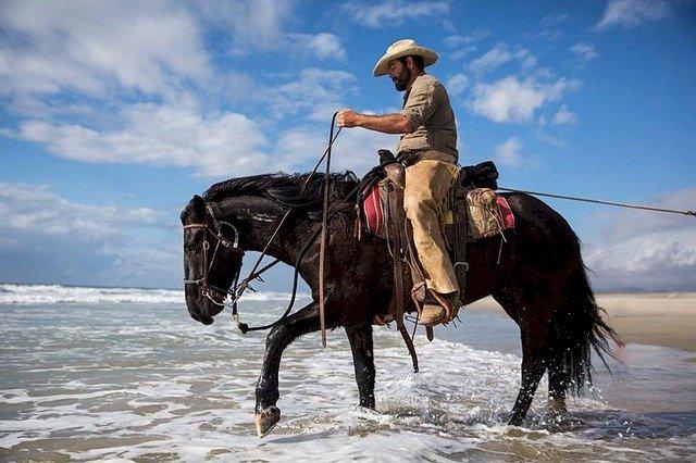 kovboj a kůň.jpg